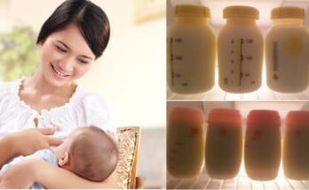 Cách kích sữa nhanh và hiệu quả nhất